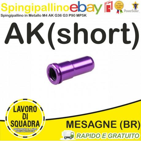 SPINGIPALLINO AK IN...